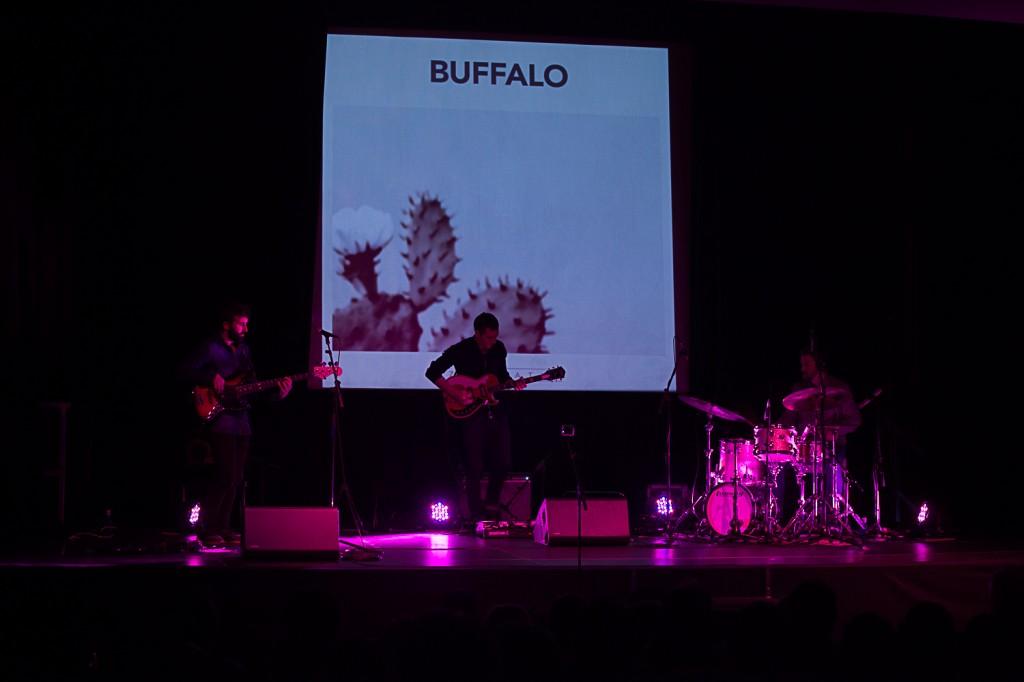 buffalo-live
